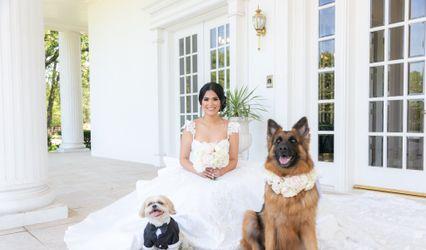 Monica Salazar - Dallas Wedding Photographer 1