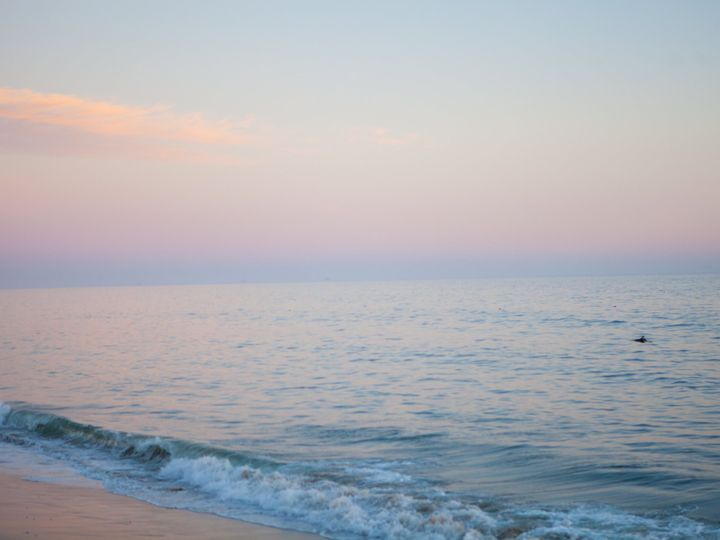 Tmx Ocean 51 1049283 Venice, CA wedding travel