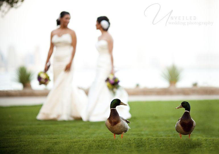 same sex wedding 126