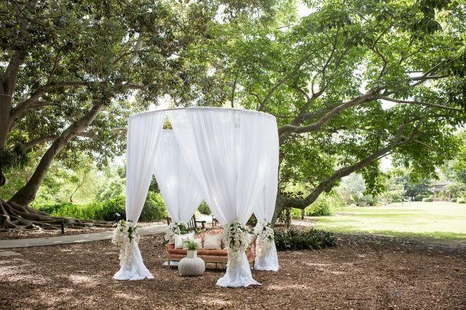 Tmx Destination Wedding In Sarasota At The Selby Gardens Cat Pennenga Photography Glamour Grace 09 680x453 51 53383 Bradenton, FL wedding eventproduction