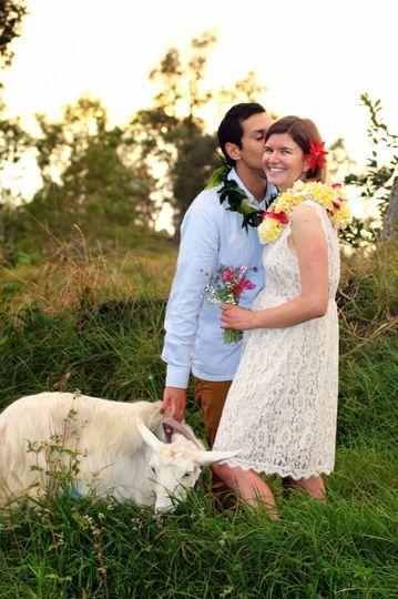 Sunshower Farms  Venue  Holualoa, HI  WeddingWire # Sunshower Hire_224249
