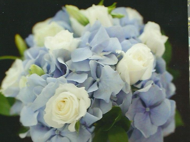 Tmx 1393268909106 Hpqscan001 Fitchburg, Massachusetts wedding florist