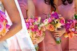Petals & Plum image