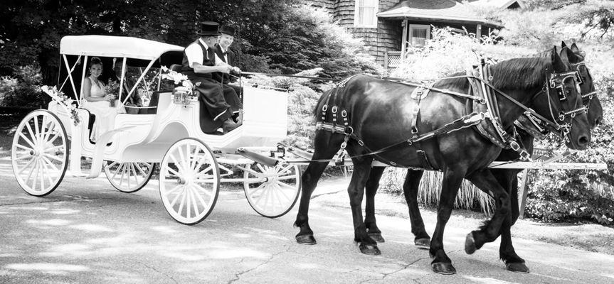 Bride and carriage