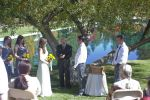Vows and Kisses image