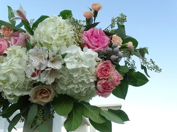 Beautiful Floral Closeup