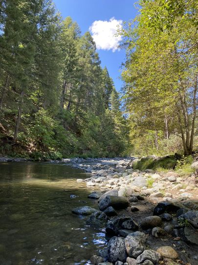 Coffee Creek