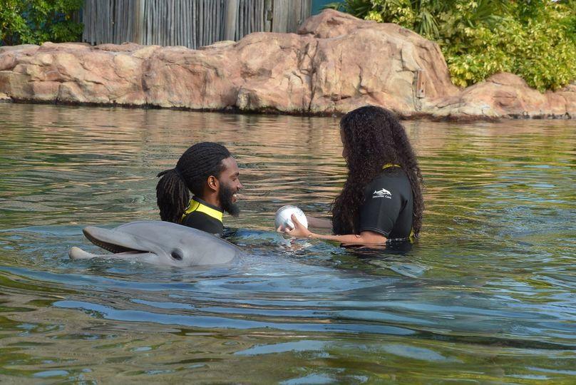M&c proposal swimming w/ dolph