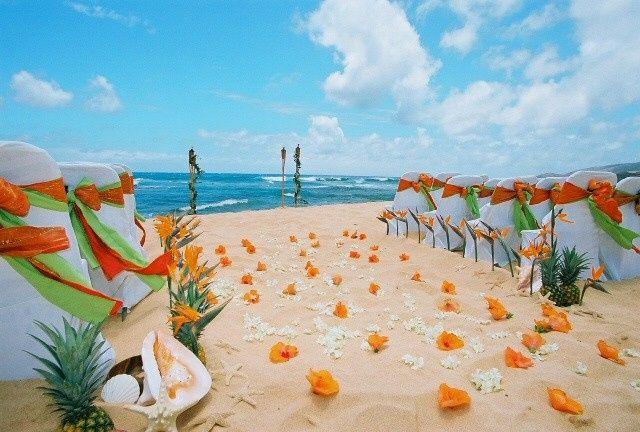 kumu hula beach with orange flowers against the sa