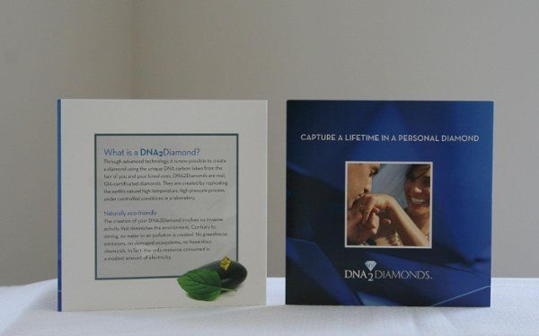 Photograph of our brochure