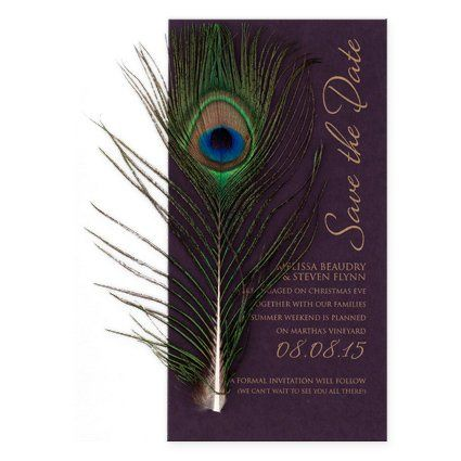 Peacock feather on invite