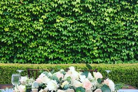 Shine Wedding Coordination