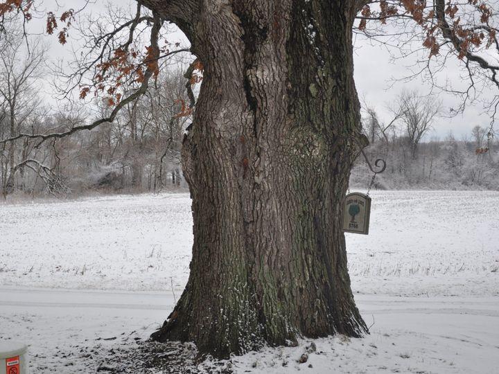 Tmx Farm White Oak Sign In Winter 51 1848783 157893343842749 Michigan City, IN wedding venue