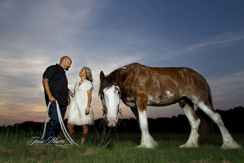 horsecouplesunset