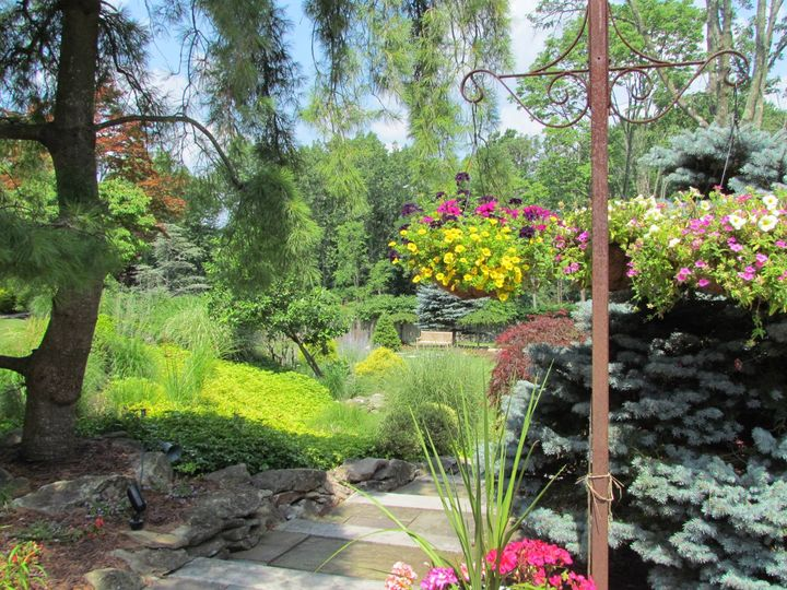 Luscious garden