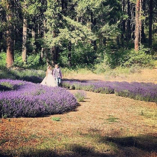 b460b550435fc78c 07 19 Kelsey Poirer wedding lavender2
