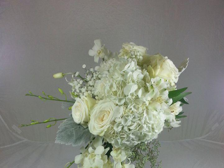 Tmx 1474913250562 Hydrangea Cascade 92016 Bensalem wedding florist