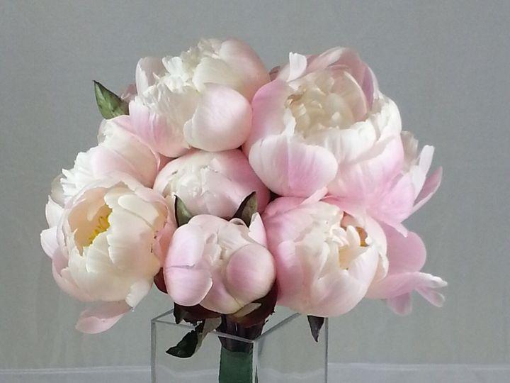 Tmx 1474913407579 Peony Bouquet 92016 Bensalem wedding florist
