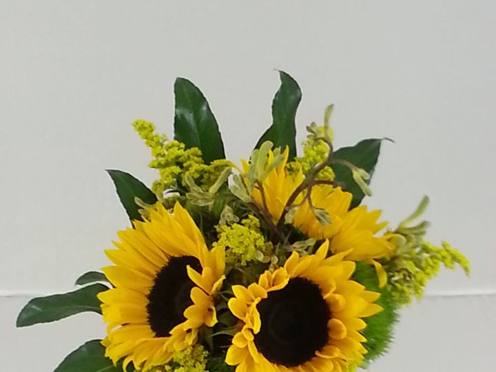 Tmx 1474913653152 Sunflowers And Solid Dago Bouquet 9 2016 Bensalem wedding florist