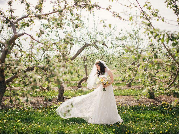 Tmx 1532884480 B44dcee3c789866f 1532884479 Abf72a1ae6771a3d 1532884465811 4 Ayres Photography  Gasport, NY wedding venue