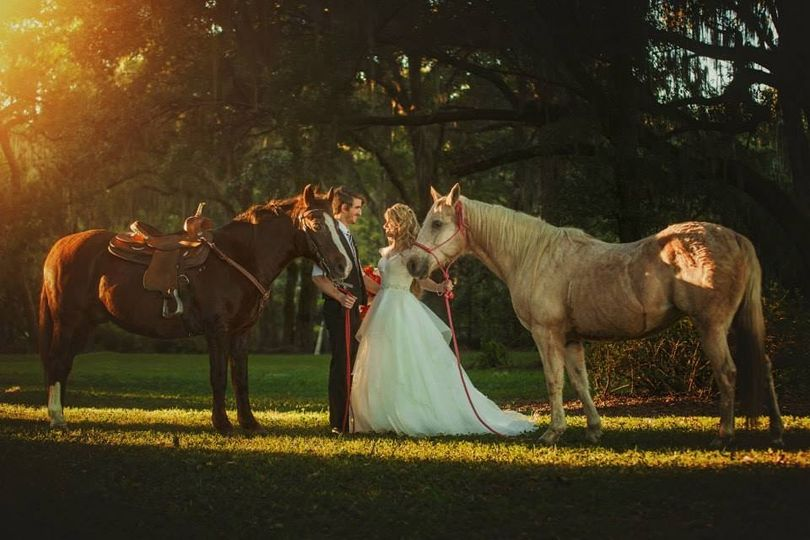 Newlyweds and the stallions