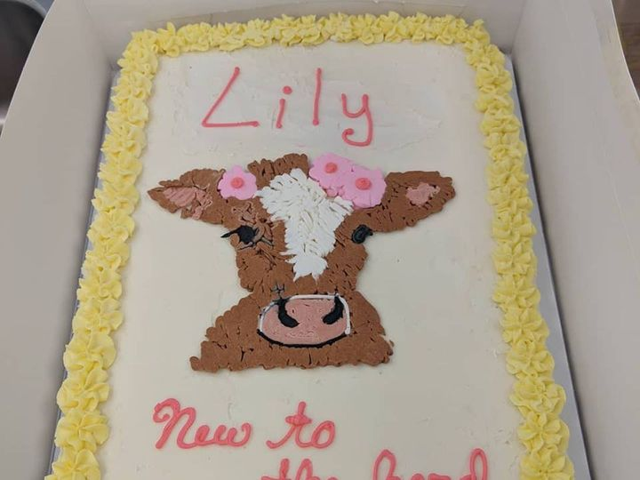 Tmx Cow Cake 51 1029983 Saint Louis, Missouri wedding cake