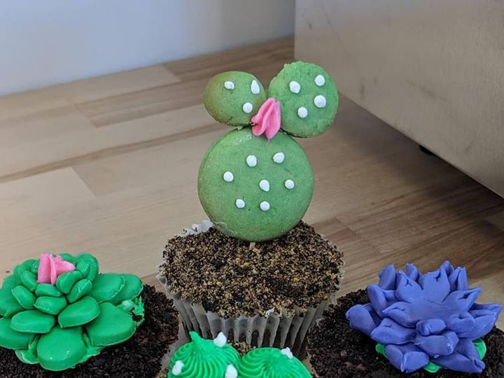 Tmx Succulent Cupcakes 51 1029983 Saint Louis, Missouri wedding cake