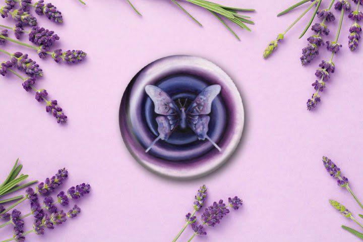 """Transcendence Butterfly"""