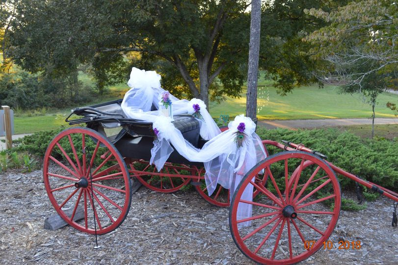 Ye olde carriage