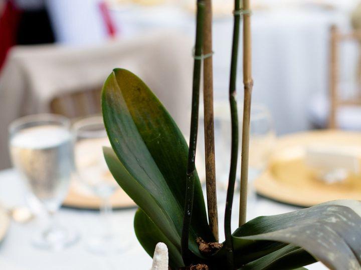 Tmx 1498677130208 Annaezesneakpeak 548   Copy Sarasota wedding catering