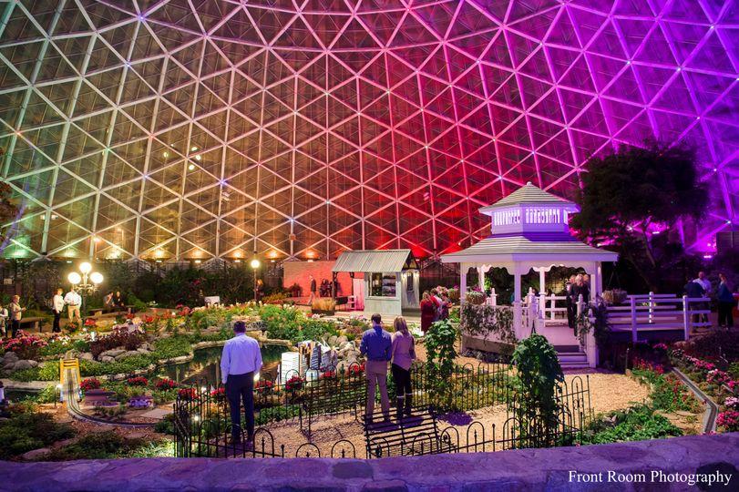Show Dome Light Show