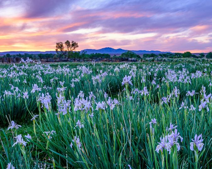 Breathtaking landscape - Alpenlight Photography
