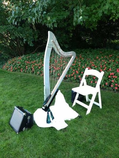 A view of the special harp I use for outdoor ceremonies.
