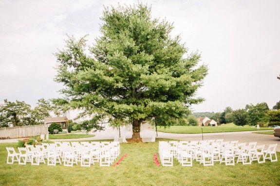 Tmx Med 2015 Valerie Steve Wedding Cast83 0226 2 51 22293 Baltimore, MD wedding planner