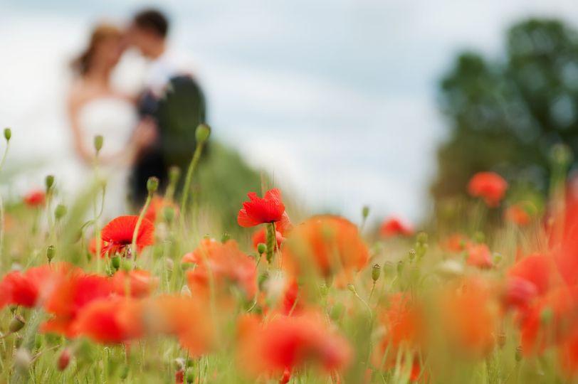photodune 3051256 wedding m
