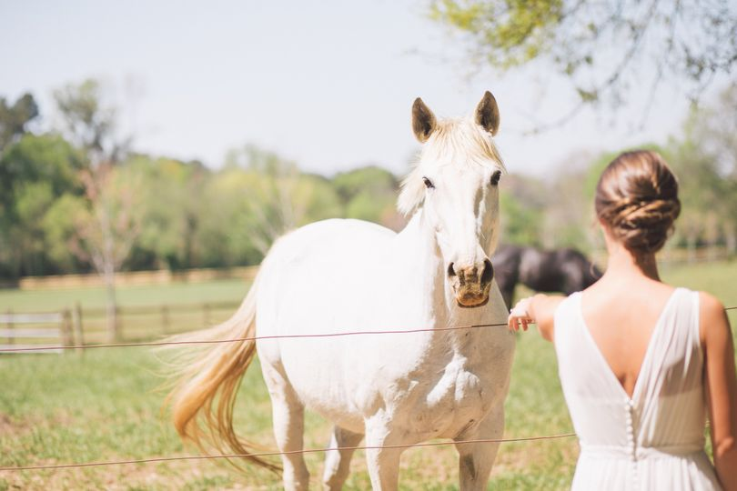 atlanta wedding photographer krista turner photo