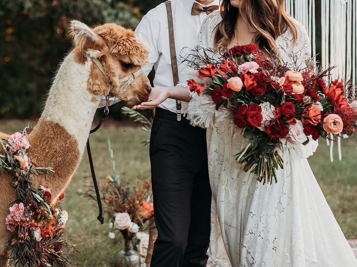 Tmx 807a6338 51 1057293 1569967639 Ozark, MO wedding planner