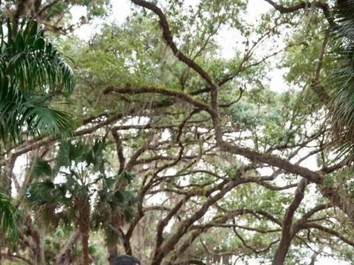 Tmx 1466533284799 Wedding  Cartpatch Trees Fort Myers, FL wedding venue