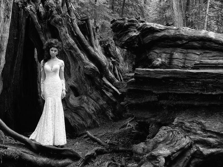 Tmx 1508021357040 9377h Ad1 Bw Williamsburg, Virginia wedding dress