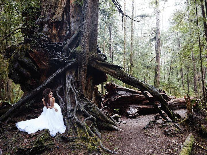 Tmx 1508021436278 9205h Ad2 Williamsburg, Virginia wedding dress