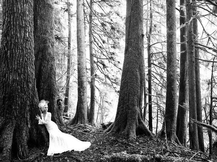 Tmx 1508021467855 9213h Ad3 Bw Williamsburg, Virginia wedding dress