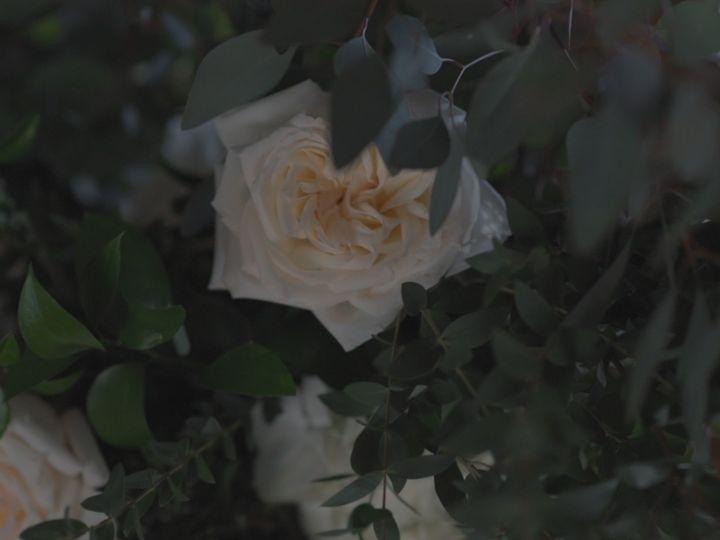 Tmx Highlight Video 00 01 22 22 Still002 51 984493 Paradise, Pennsylvania wedding videography
