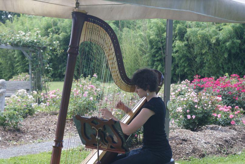 AimeeOnTheHarp garden wedding