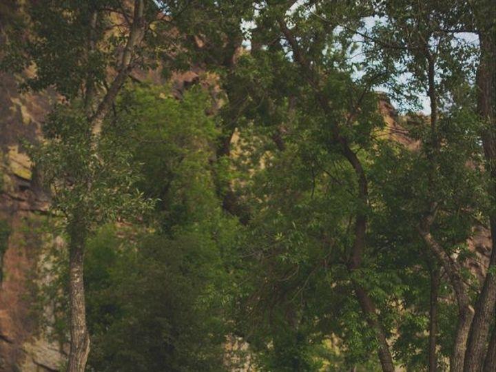 Tmx 1504038001148 Outdoor Bohemian Colorado Wedding50 600x900 Boulder, Colorado wedding catering