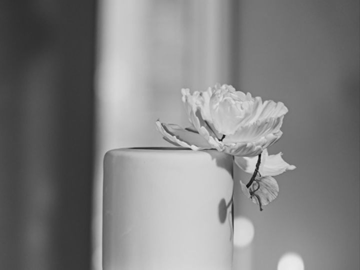 Tmx Cake 51 1862693 158489501347695 Peekskill, NY wedding venue