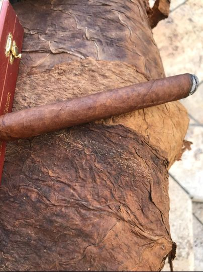 Cigar and tobacco leaves