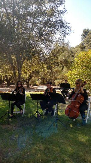 Milagro Winery string quartet