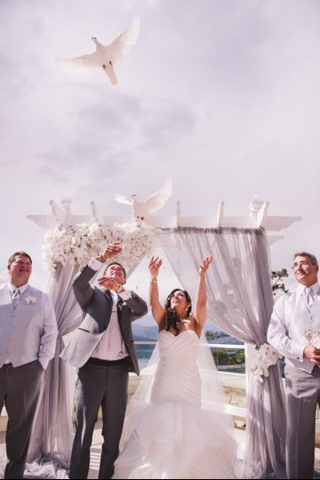 White Orchid Wedding Consulting