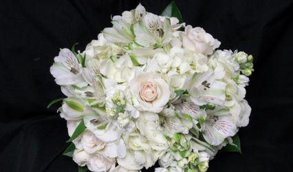 ParkCrest Floral 1
