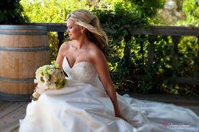 Brian David Fine Art Wedding Photography